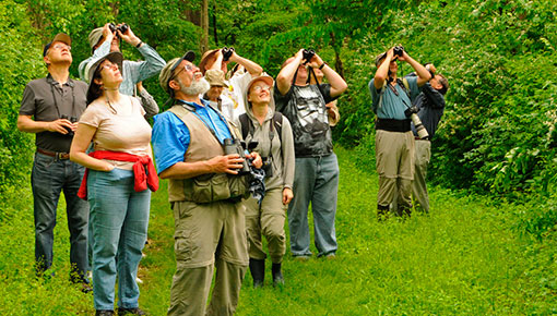Washington Crossing Audubon Field Trip to Institute Woods, Princeton © Tyler Christensen