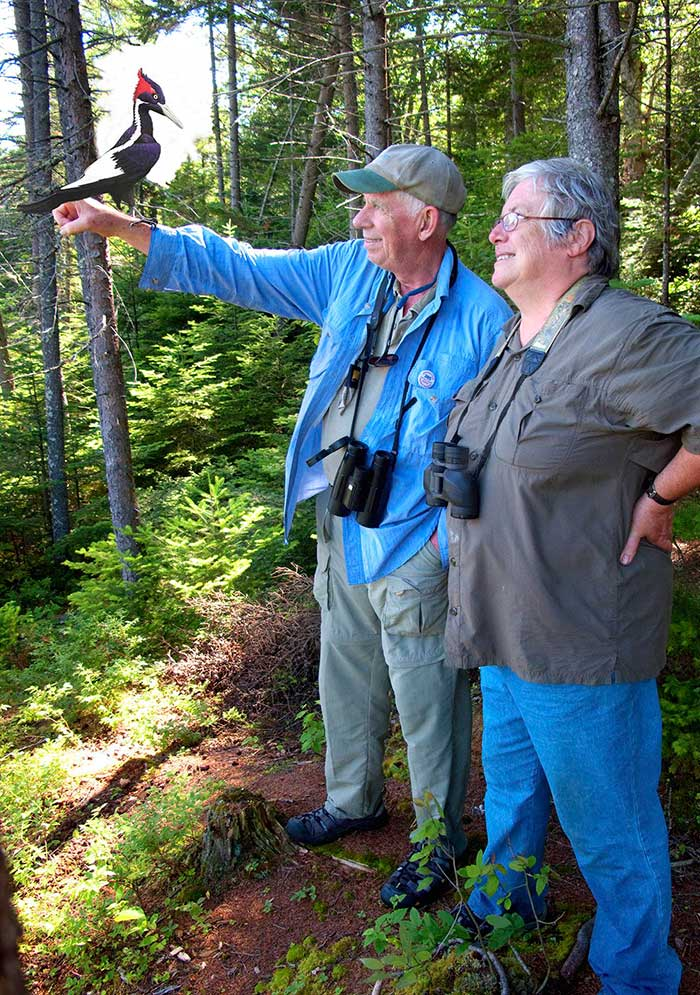 Ivory-billed Woodpecker talking taxonomy with Frank Gill © Frank Gill
