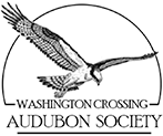 Washington Crossing Audubon Society website